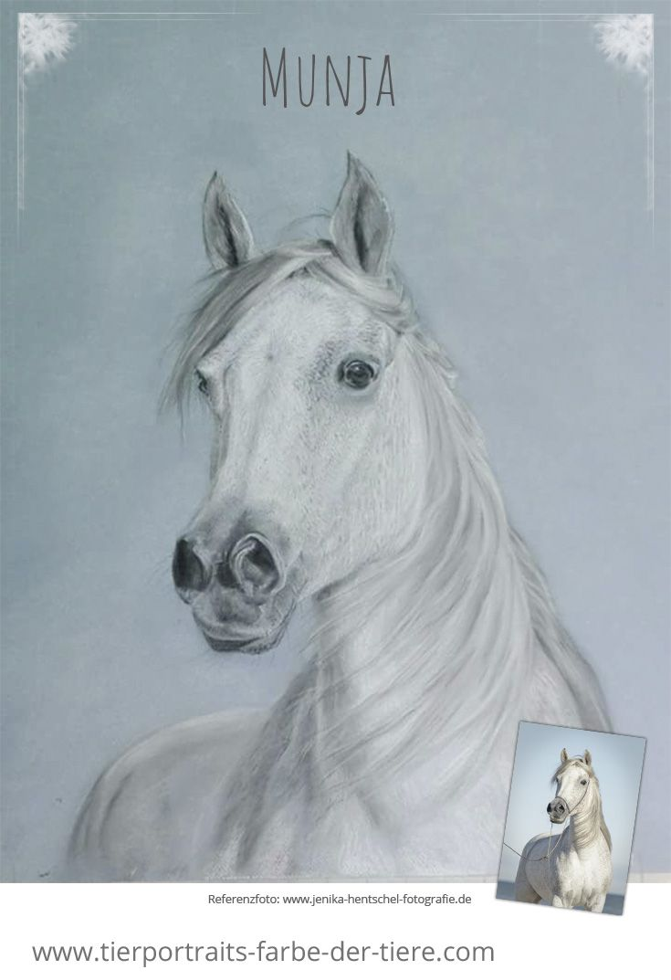 8 best Bettinas Blog images on Pinterest | Animal drawings, Gift and ...