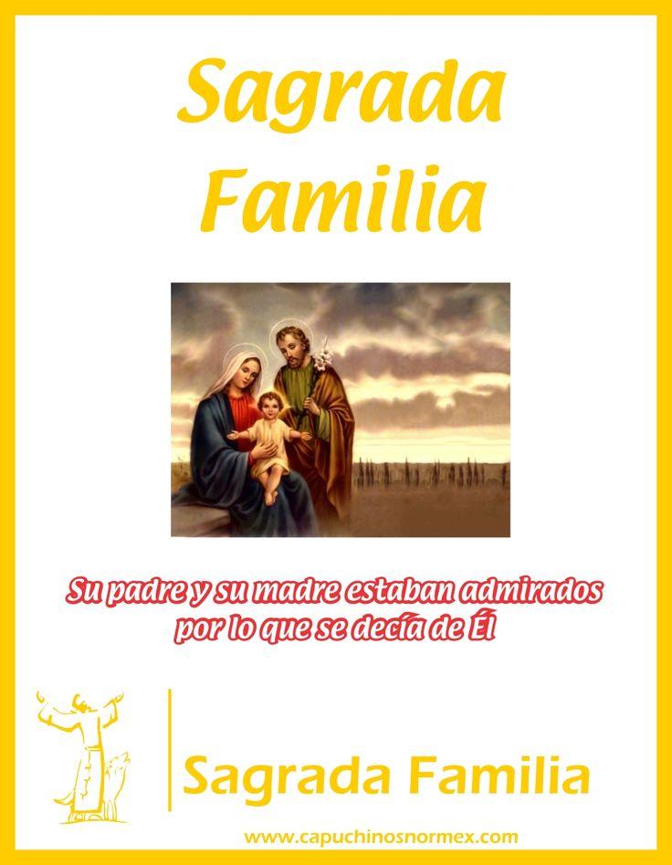 Que en la familia de Nazareth podamos encontrar el camino de santificación de nuestras familias