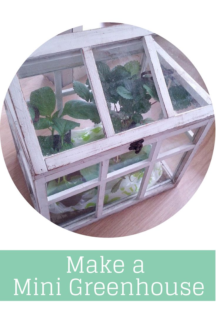how to make a mini greenhouse for herbs