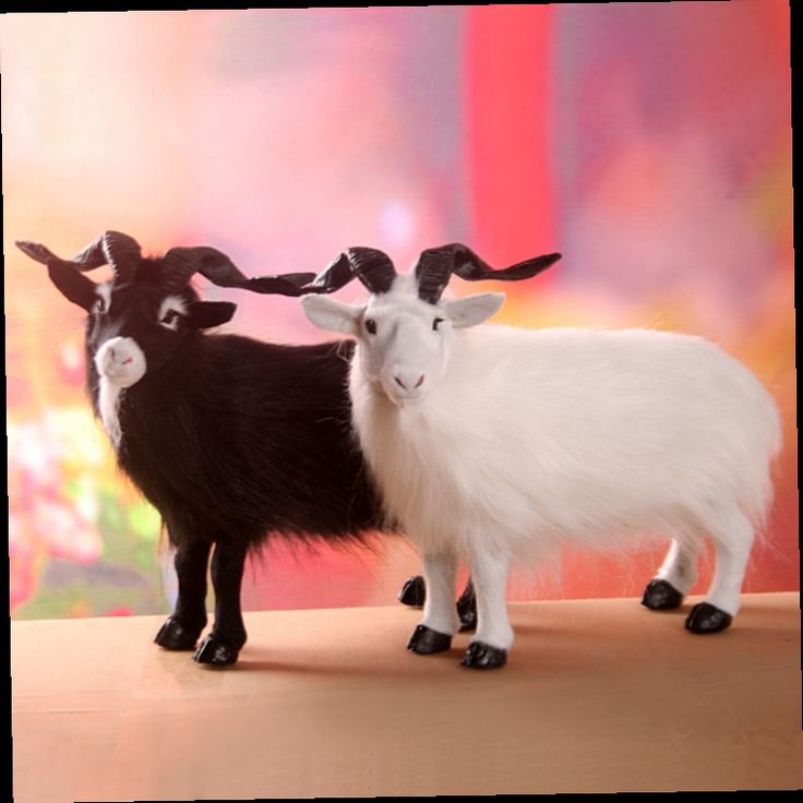 90.00$  Watch here - http://ali04p.worldwells.pw/go.php?t=32697955092 - a pair of simulation goat toys polyethylene & furs Hairy black and white sheep doll gift about 35x27cm