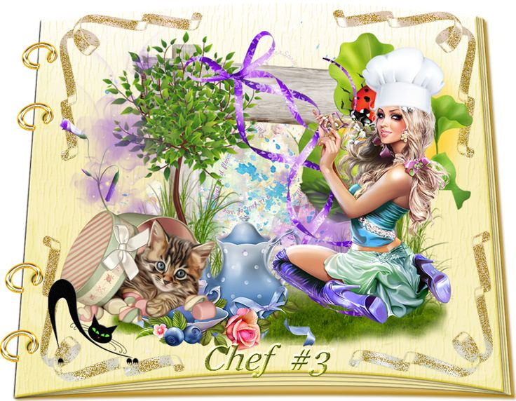 Design Wilds Cat: Vector Chef Collection #3 - 25 Ai Повар