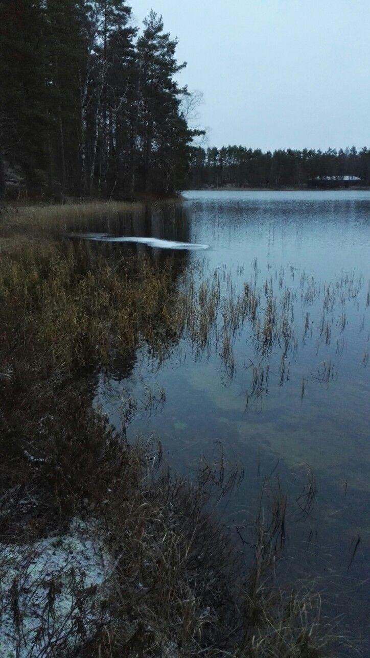 #omaisapu #järveltä #lake #marraskuu #november