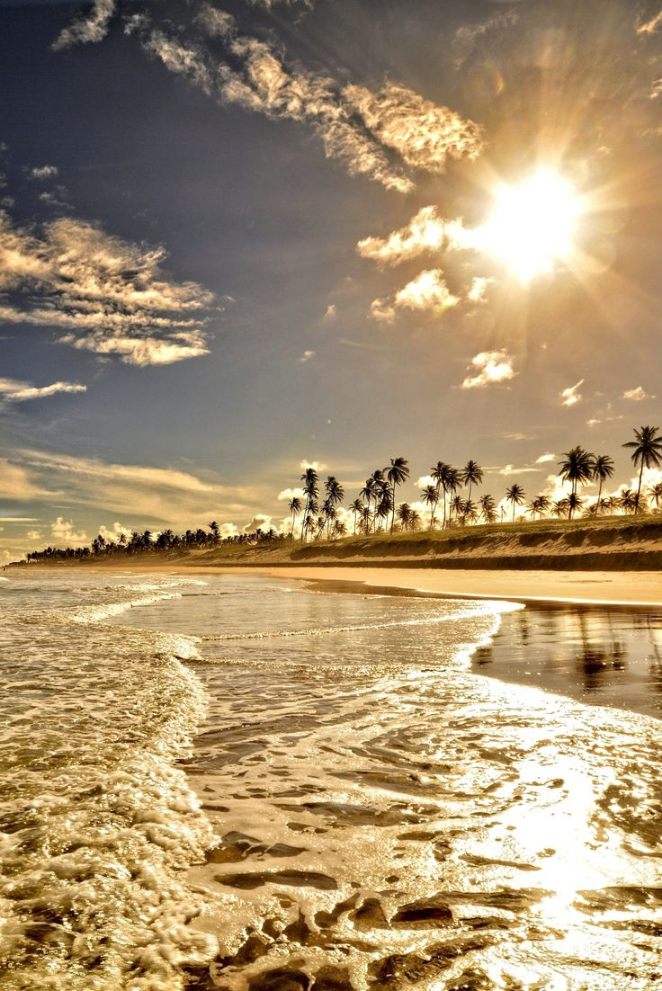 I'd like to be there... Sun over the beach and palm trees...