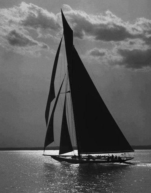 : Sailboats, Sailaway, Black And White, Silhouette, Sea, Ships, Sailing Away, Yachts, Sailing Boats