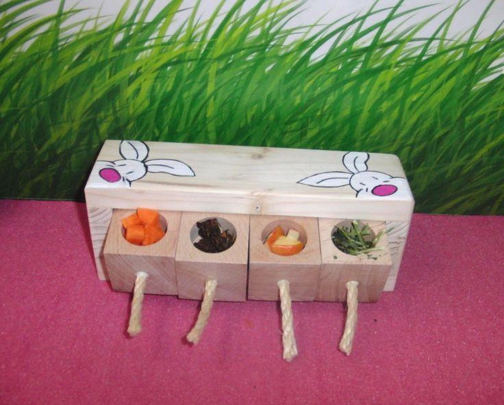 die besten 25 kaninchen ideen auf pinterest hase niedliche babyh schen und hasenbabies. Black Bedroom Furniture Sets. Home Design Ideas