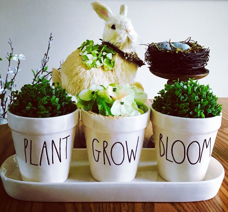Love my Rae Dunn planter!