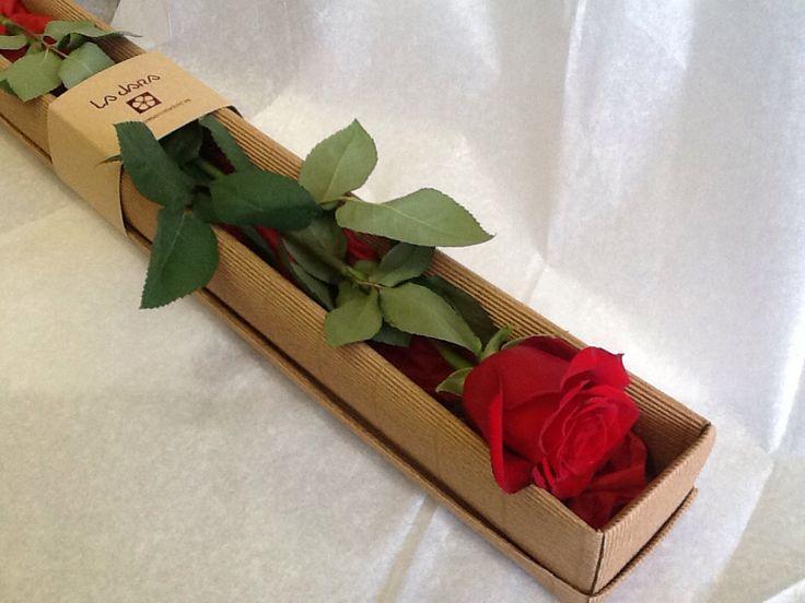 Rosa en caja www.floresenvalladolid.es