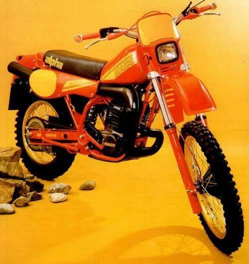 GSE 490, 1981