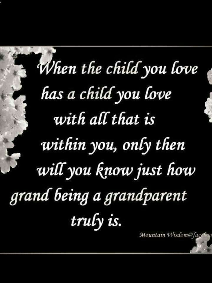 Best 25 Grandkids Quotes Ideas On Pinterest Grandchildren Quotes On Grandparents And