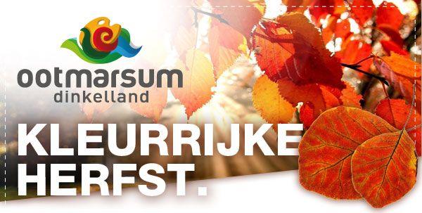 Kleurrijke Herfst! Het glooiende bosrijke landschap rondom het stadje Ootmarsum zorgt voor een prachtig kleurenpalet in de herfst. Bezoek Ootmarsum-Dinkelland en geniet van de grote variatie in gastvrije accommodaties, de streekeigen producten en de bijzondere galerieën.