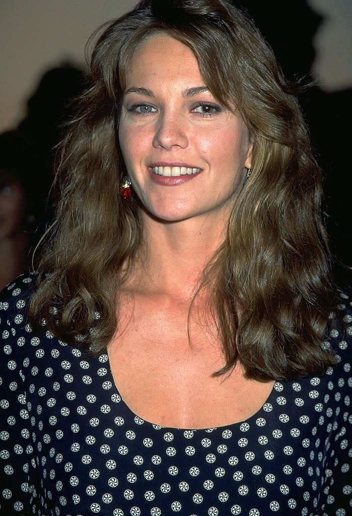 Diane Lane Wiki: Age, Movies, Net Worth, Family and Things You Need to Know