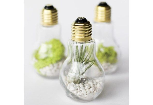 Here's a bright idea: Why not get crafty with all those extra light bulbs you have in your home, and turn them into something fabulous? From little terrariums to a standout chandelier, we have twenty gorgeous uses for light bulbs coming your way.
