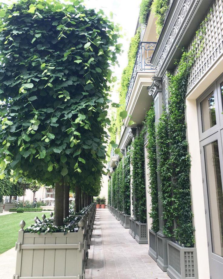 Les jardins du @ritzparis sont ouverts  Au programme : barbecue le samedi et brunch le dimanche  #parisjetaime #ritz #frenchgarden #luxuryhotel