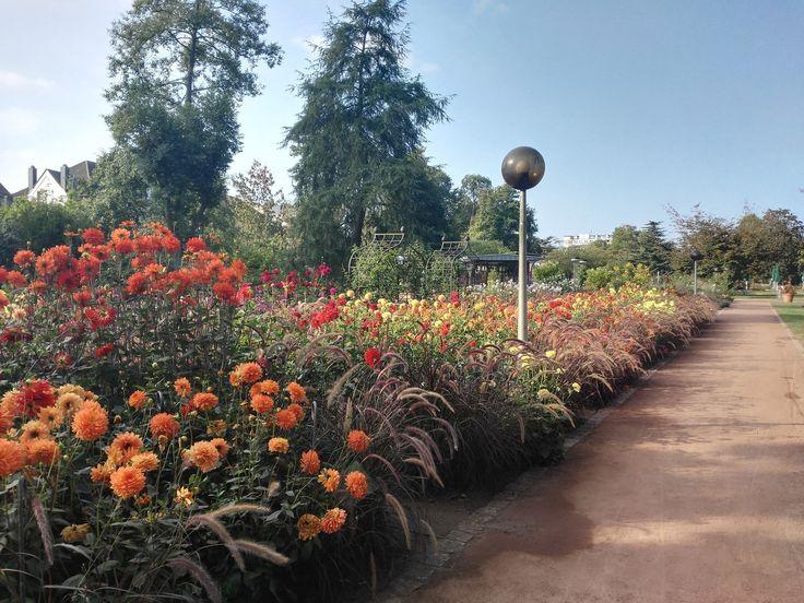 Ideal Im Rosengarten Zweibr cken bl hen gerade die Dahlien Gem tlich sitzend auf den B nken unter den Viktorianischen Lauben von Classic Garden Elements kann man