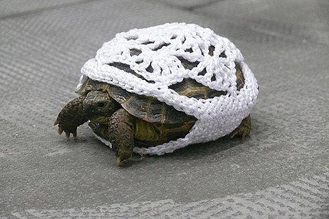 Please refrain from yarn-bombing the wildlife.... ;-) Haha!