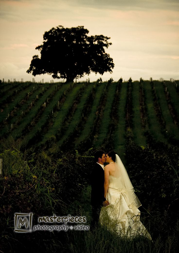 One of our all time favourite images You've got to love a vineyard for perfect wedding photographs x