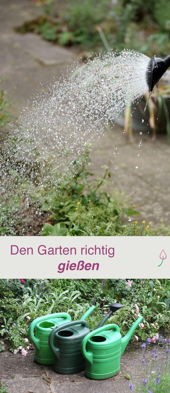 Great Den Garten richtig gie en