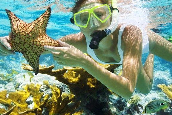 Ocho Rios Snorkeling Adventure Tour - Snorkel coral reefs and view the ocean floor