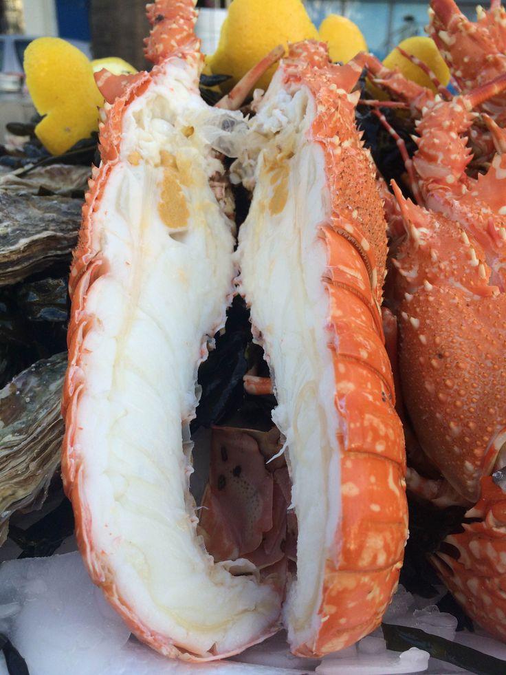 Magnifiques langoustes cuites à l'eau de mer chez Pierrot Coquillages à Marseille!  04 91 719 765 commandez en ligne sur www.coquillagespierrot.com et faites vous livrer à domicile