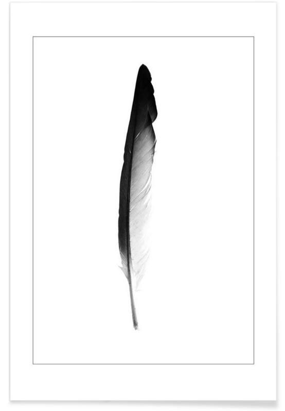 Feather as Premium Poster by Svenja Trierscheid | JUNIQE