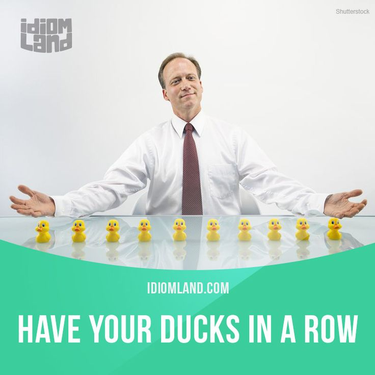 """Have your ducks in a row"" means ""to be well organized"". Example: Wouldn't it be nice to have our ducks in a row and not have to search for the papers every time we needed them? -           Learn and improve your English language with our FREE Classes. Call Karen Luceti  410-443-1163  or email kluceti@chesapeake.edu to register for classes.  Eastern Shore of Maryland.  Chesapeake College Adult Education Program. www.chesapeake.edu/esl."