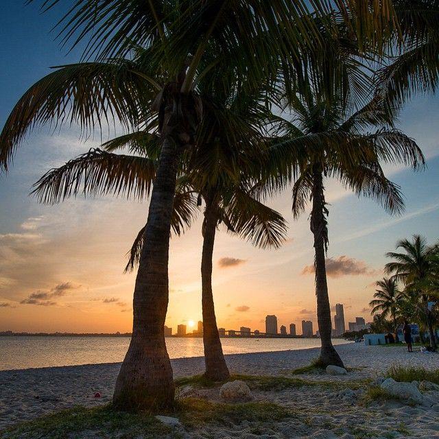 """Good #Night #Miami"""