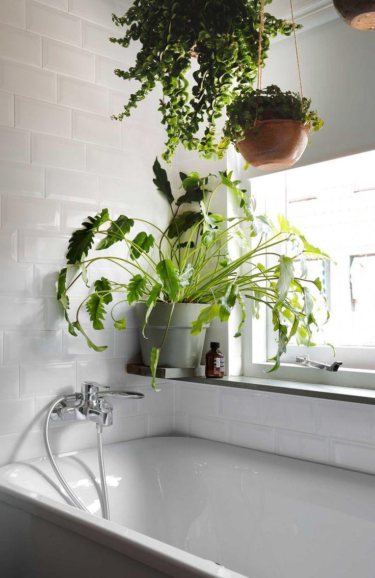 25 beste ideeà n over badkamer haarlem op pinterest