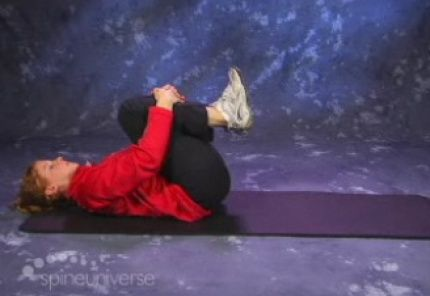 Video Series:  Exercises for Lumbar Spinal Stenosis
