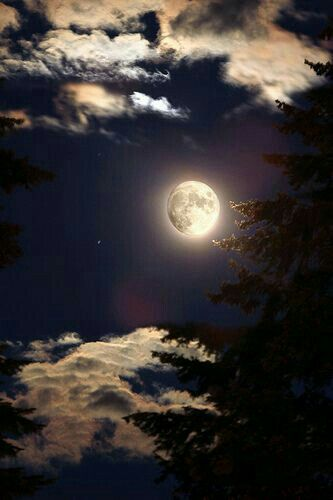 Luna, tú que lo ves, dile..