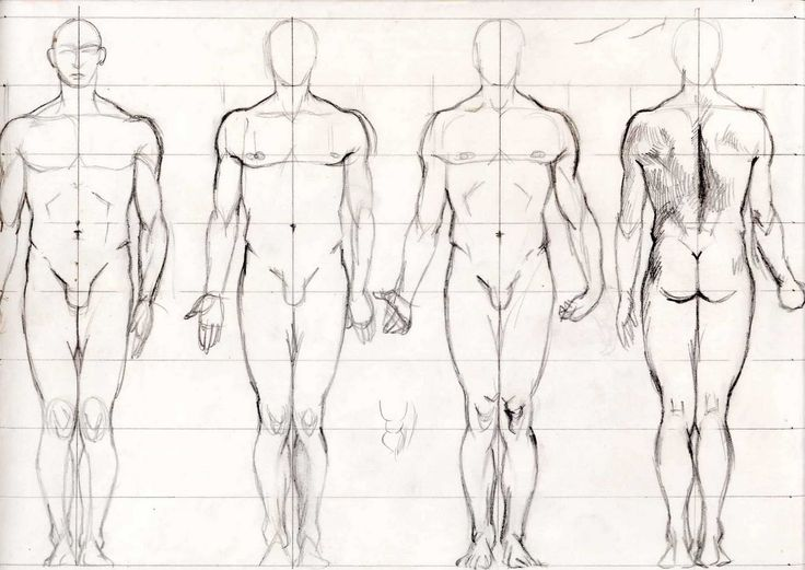73 best Drawing Male Figure images on Pinterest | Drawing reference ...