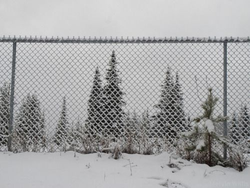 25 Unique Snow Fence Ideas On Pinterest Pattern