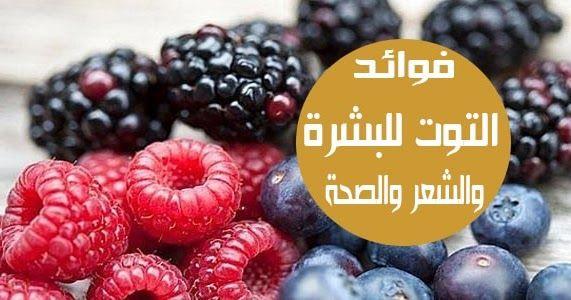 فوائد التوت للبشرة والشعر والصحة يشتهر التوت بذوقه العجيب والرائع واستخداماته الواسعة والمختلفة نحن نعلم جميعا أن تناول الثمار مفيد لل Raspberry Blueberry Food