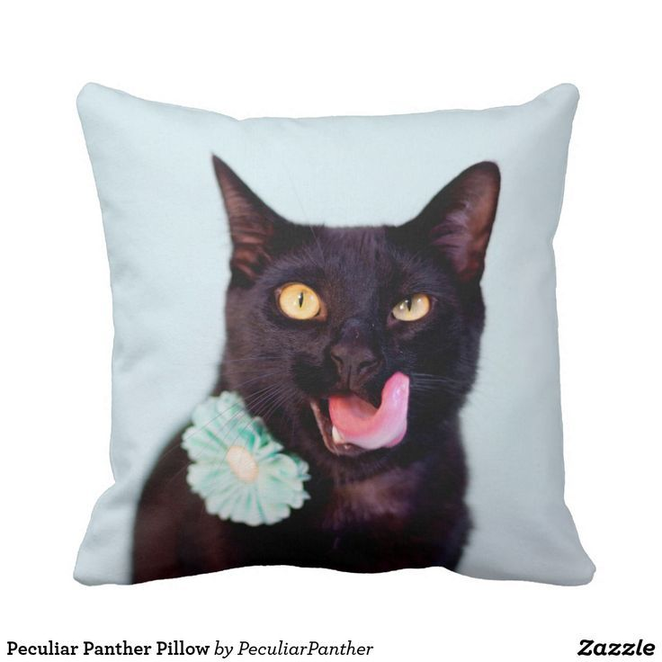 A friend has the coolest black cat. They take the most fun images ever and the results are wearable, adorable and so much fun to ownPeculiar Panther Pillow