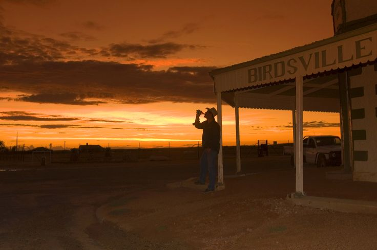 Stockman at sunset at the Birdsville Hotel, Queensland, Australia. Image by Danielle Lancaster