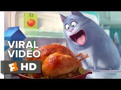 The Secret Life of Pets VIRAL VIDEO - Meet Chloe (2016) - Jenny Slate Animated Movie HD - YouTube