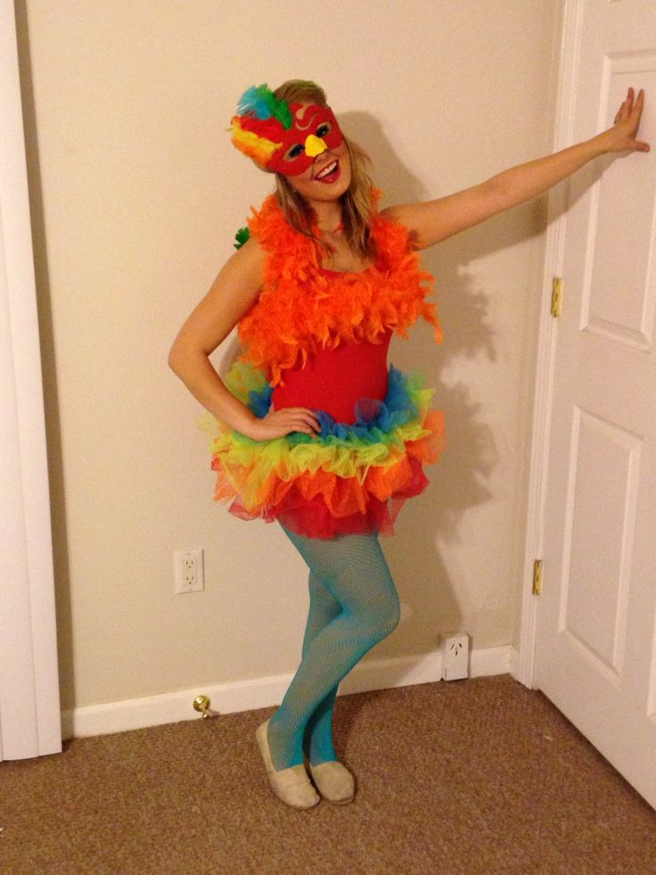DYI parrot costume.   Red leotard  Cheap white mask( I painted and feathered my own) One boa color of choice  Fishnets  Colored tutu Bloomers
