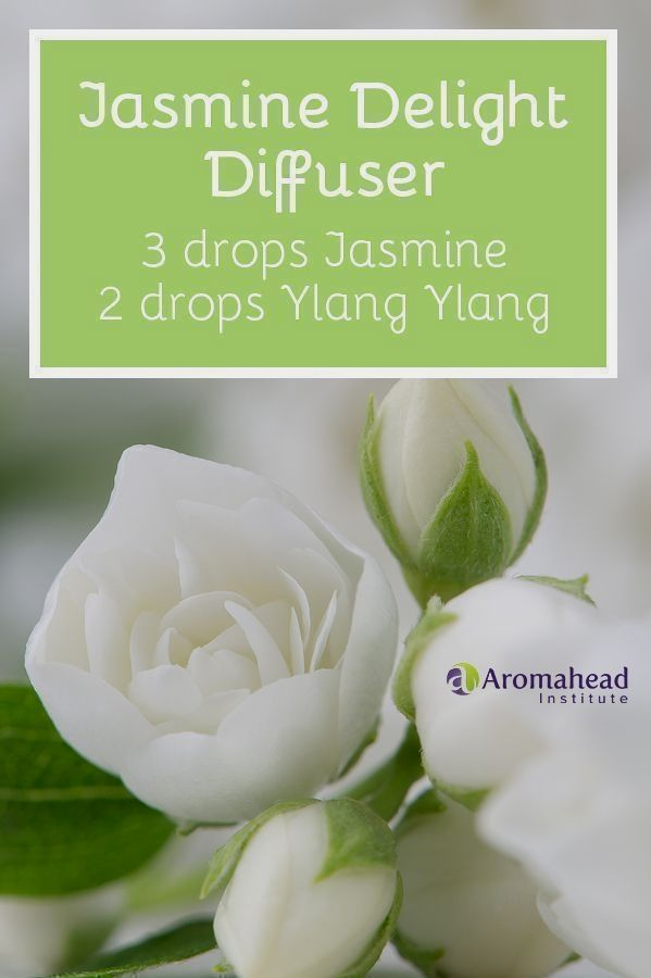 I Love Using This Jasmine And Ylang Ylang Essential Oil Diffuser