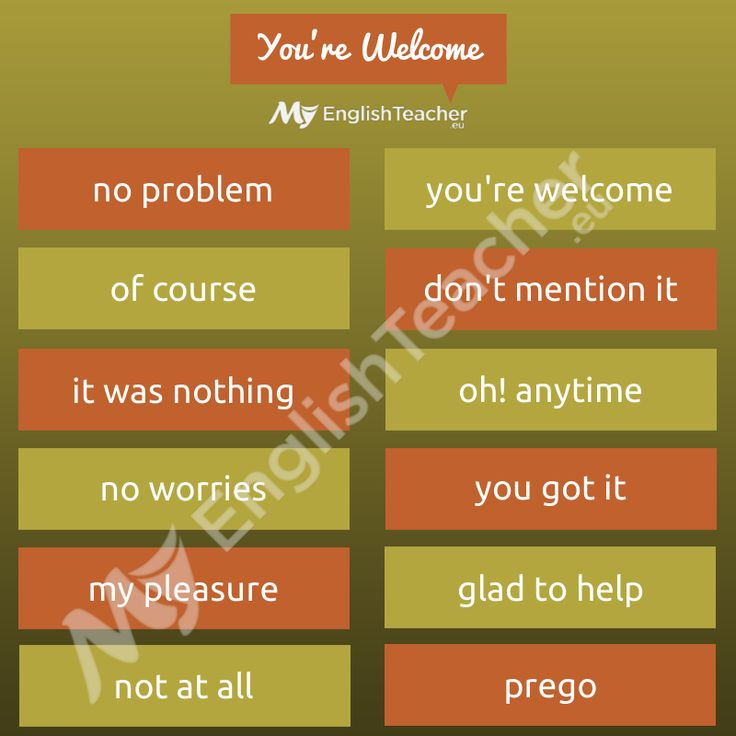 how to say you re welcome in dutch