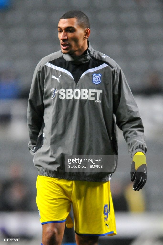 Jay Bothroyd, Cardiff City