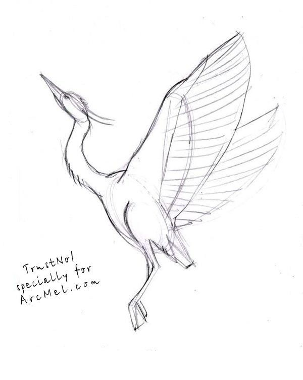 Pin By Carmen Gonzalez On Azenda Flying Bird Drawing Bird Drawings Fly Drawing