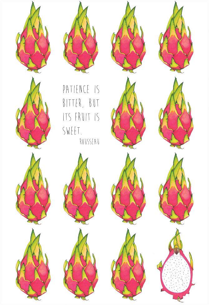 """Dragon Fruit"" #dragonfruit #rousseau #illustration #pattern #ink #allestudio #NutritionWallpers"