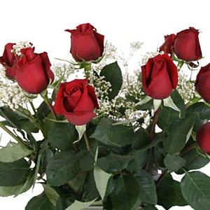 Sams Club Fair Trade Roses