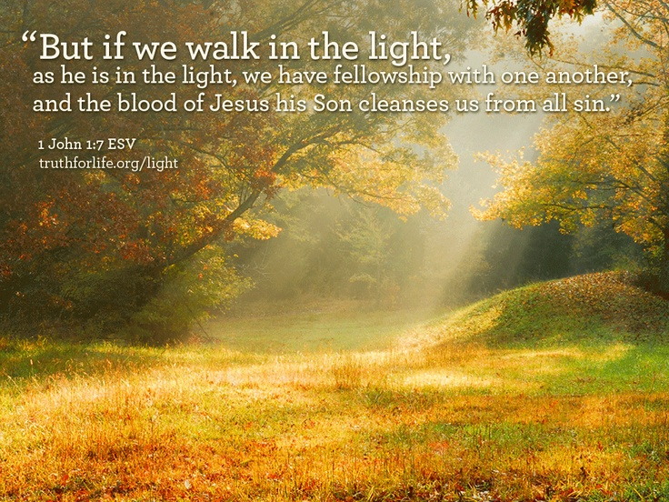 But if we walk in the light...Autumn Scene, Beautiful, Country Living, Hors Art, Spirituality Gift, Golden Lights, Georgia Sunrises, Heavens, Sunrises Fragrance
