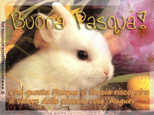 """""""Che questa Pasqua ci faccia riscoprire il valore delle piccole cose. Buona Pasqua! #auguri #buonapasqua #pasqua #cartolinevirtuali"""