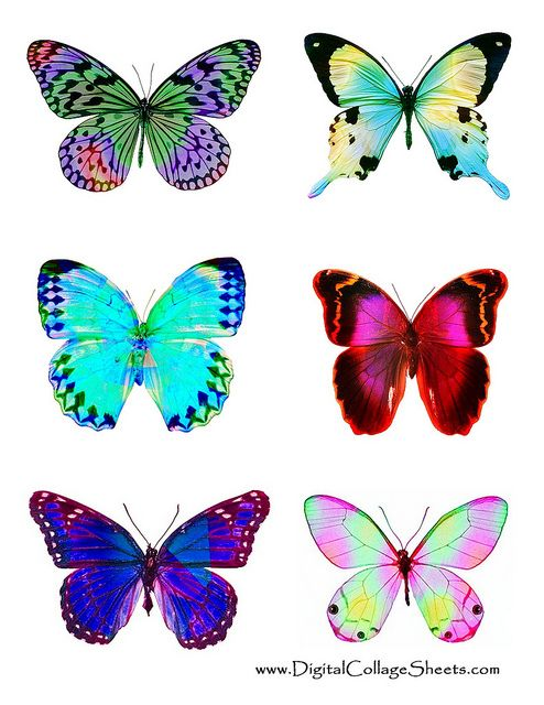 Free Collage Sheet Fantasy Butterflies