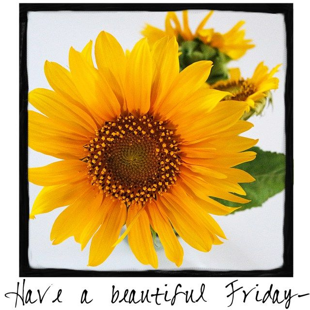 Have a Beautiful Friday! Come visit A Warm Hello on Facebook every day to find a…