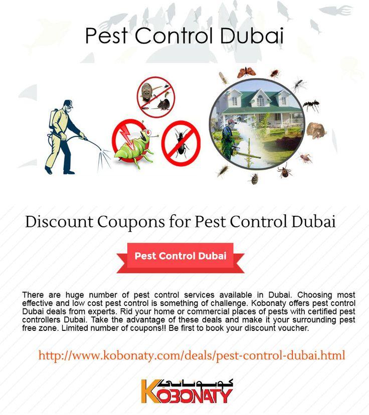 special offer for Pest Control Dubai - http://www.kobonaty.com/deals/pest-control-dubai.html