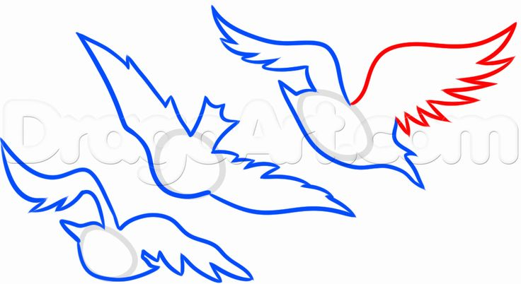 How to Draw Divergent Tris Birds Tattoo, Step by Step, Tattoos ...