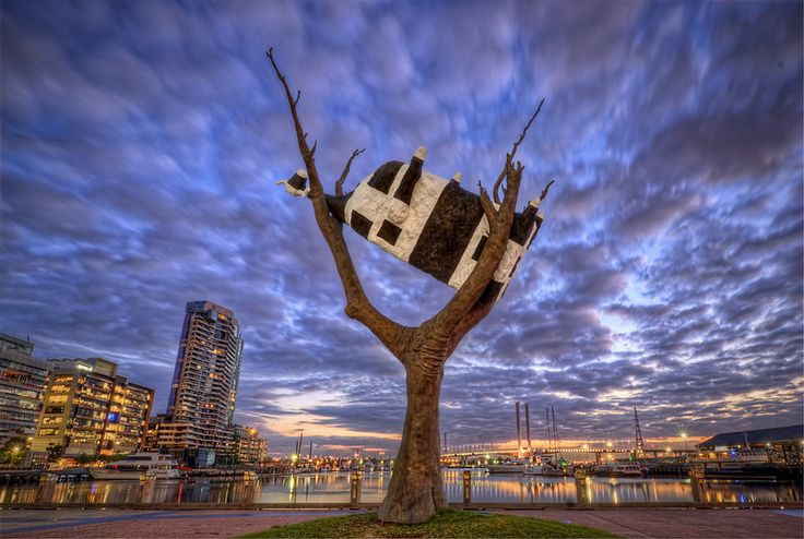 Cow up a Tree - A sculpture in Melbourne's Docklands district that is well described by its title: Cow up a Tree.