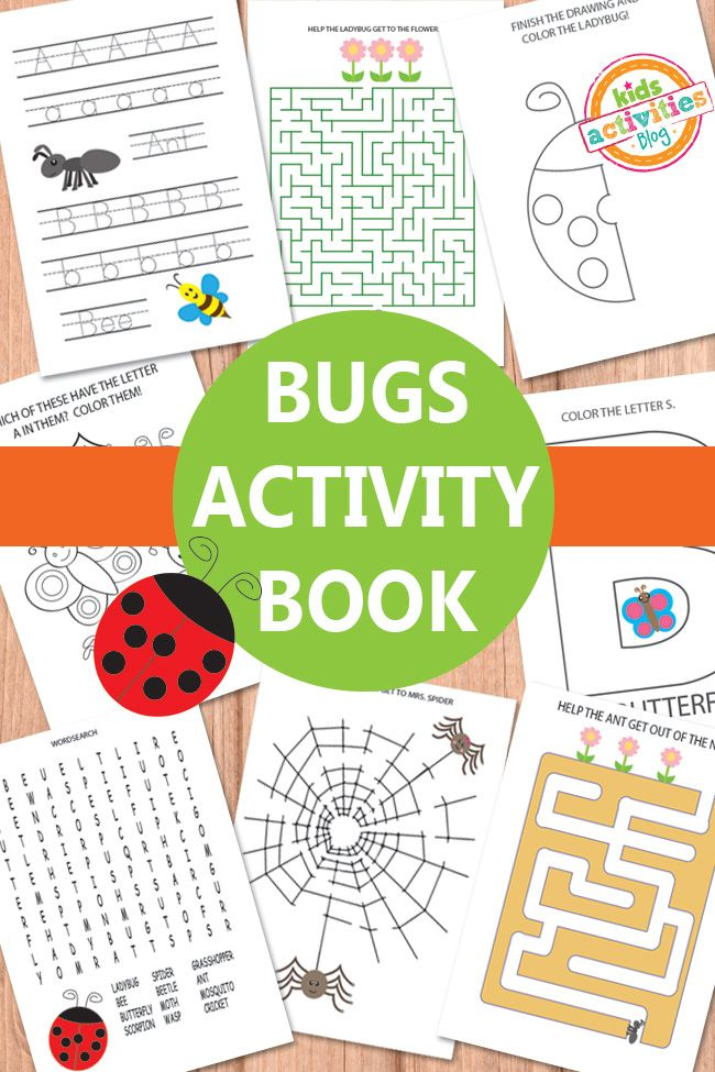 Bugs Activity Sheets Free Kids Printable